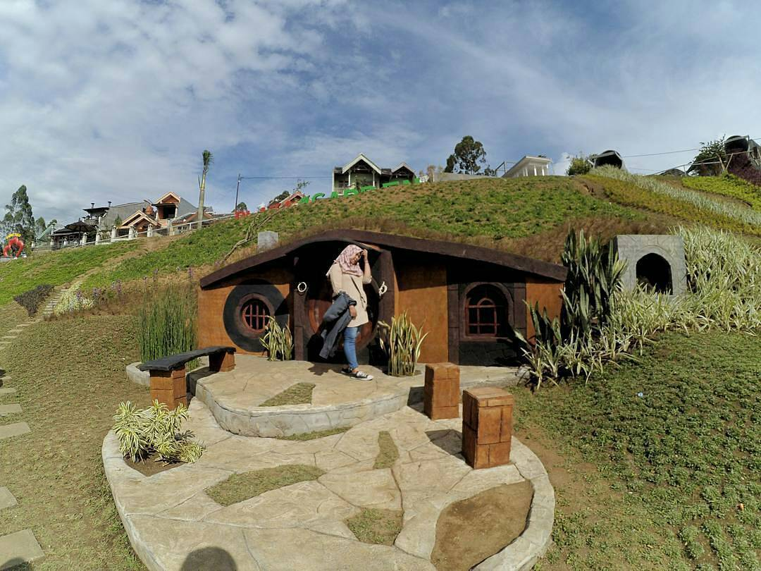 Jangan Ngaku Penyayang Satwa 7 Destinasi Malang Raya Taman Kelinci