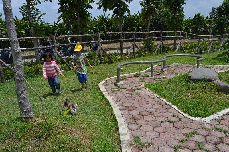 Limakaki Taman Kelinci Destinasi Wisata Kota Malang Dimana Lokasinya Dekat