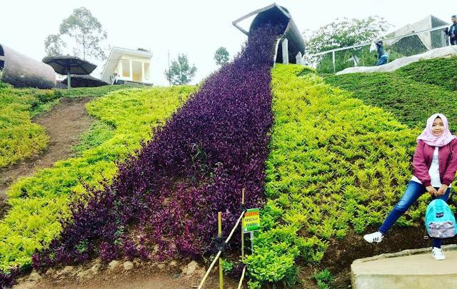 Taman Kelinci Rumah Hobbitnya Wisata Edukatif Malang Kab