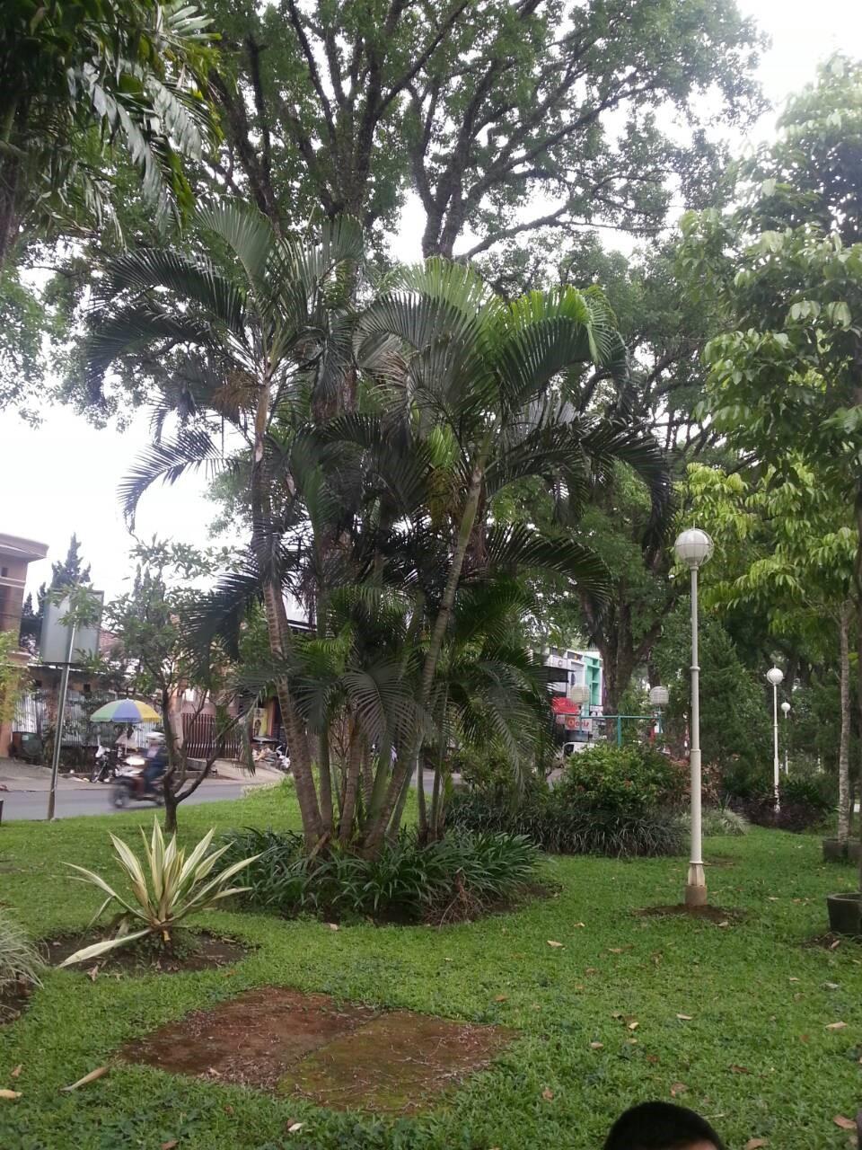 Vera Mylani Taman Kunang Sebagai Ruang Hijau Kota Malang Kab
