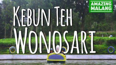 Taman Merjosari Malang Amazing Kebun Teh Wonosari Kab Jawa Timur