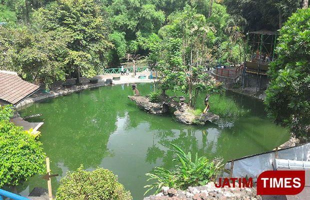 Traveltimes Tlogomas Land Wisata Pinggiran Kota Malang Salah Satu Wahana