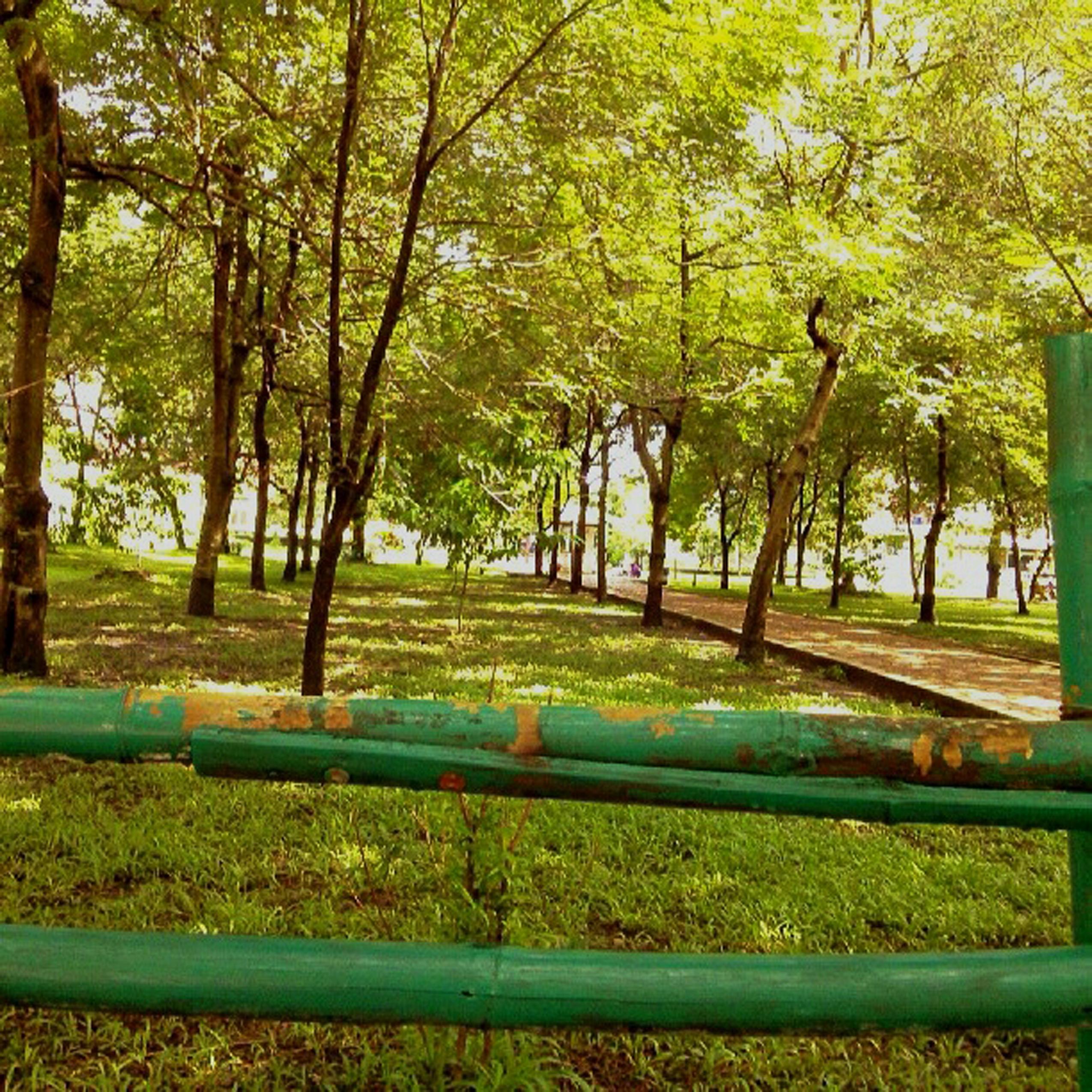 Malangan Ngalam Menghadirkan Nostalgi Kota Malang Tempoe Doeloe Taman Slamet