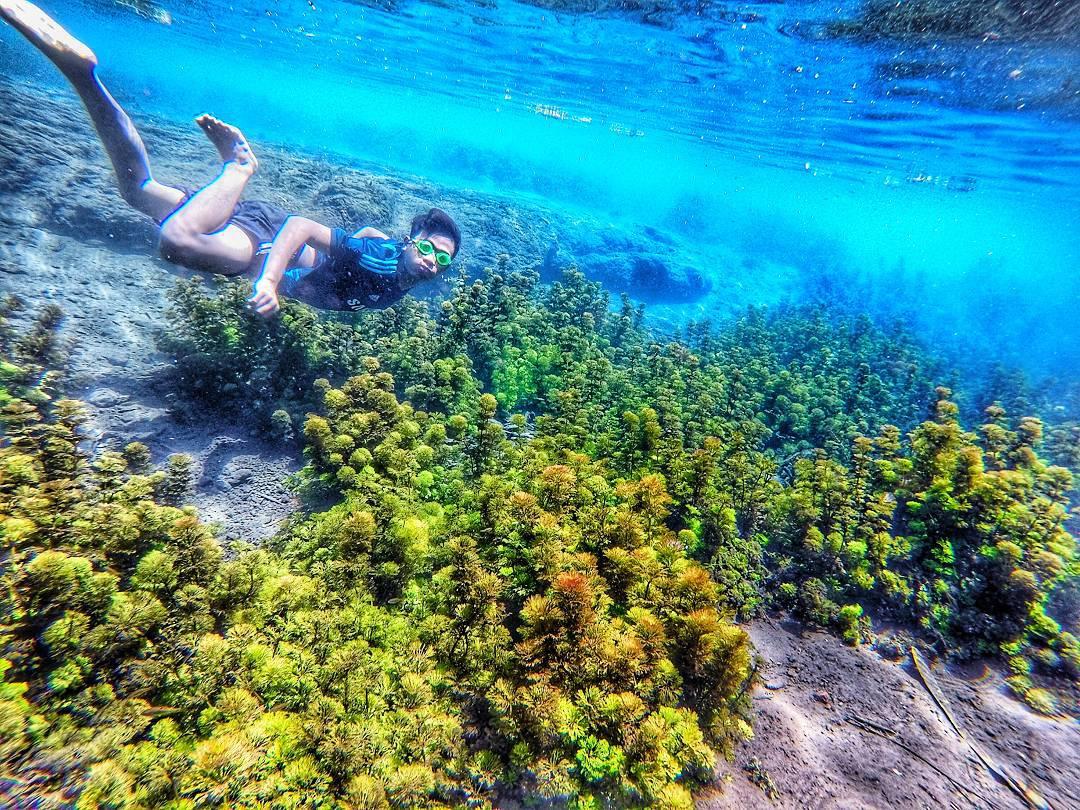 5 Tempat Wisata Air Malang Wajib Dikunjungi Reservasi Teluk Bidadari
