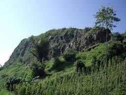 Beautiful Manokwari Feel Worlds Paradise Kawasan Lindung Melindungi Bagian Hutan