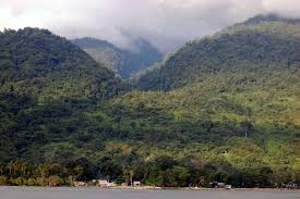 Cagar Alam Wondiwoy Wonderful Indonesia Pegunungan Arfak Kab Manokwari