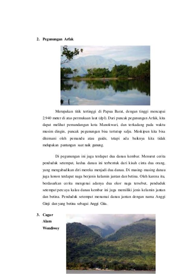 Geografi Regional Papua 39 2 Pegunungan Arfak Cagar Alam Kab