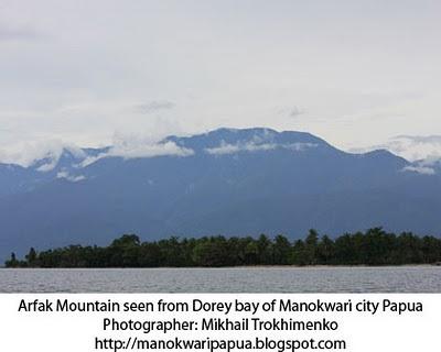 Hutan Tropis Pegunungan Arfak Diari Charles Roring Sebelah Selatan Kota