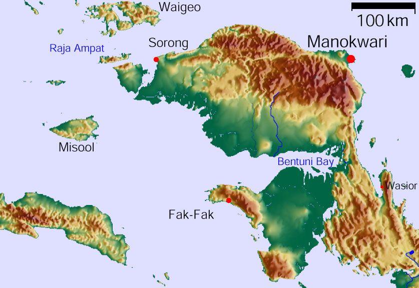 Kabupaten Manokwari Wikipedia Bahasa Indonesia Ensiklopedia Bebas Cagar Alam Pegunungan
