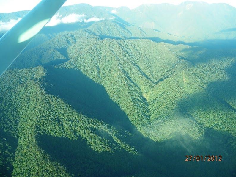 Mari Bertandang Tanah Papua Hanjump Pegunungan Arfak Cagar Alam Kab