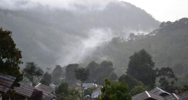 Perubahan Kawasan Ancam Cagar Alam Pegunungan Arfak Cahaya Papua Kab