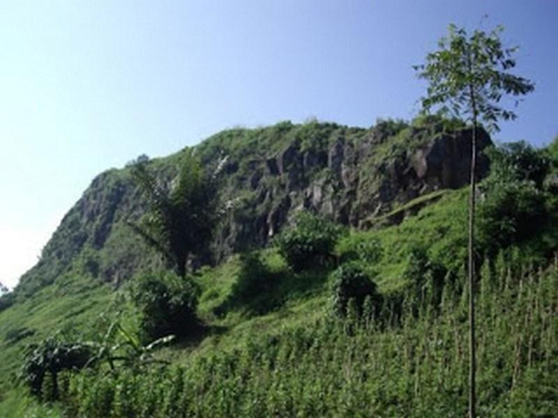 Pesona Wisata Manokwari Hutan Guunung Meja Jpg Taman Alam Gunung