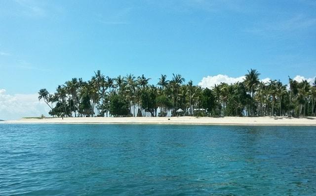 Pulau Buaya Tempat Wisata Papua Barat Pantai Yangi Alami Taman