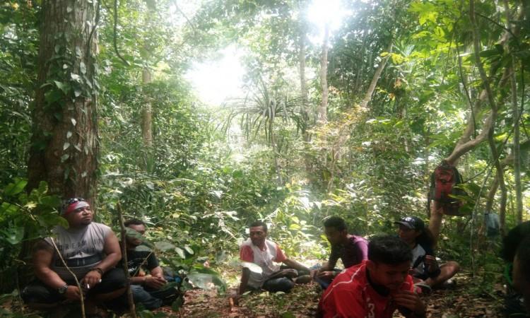 Sambut Hari Bumi 300 Bibit Pohon Matoa Percantik Twa Gunung
