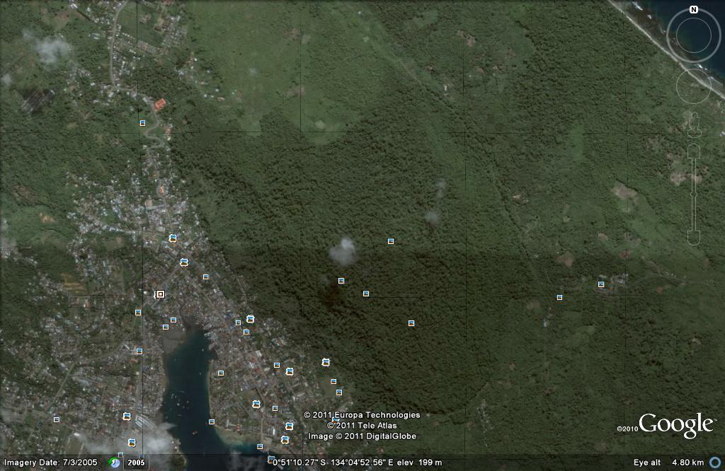 Sekilas Tentang Kelelawar Pemakan Buah Chiroptera Pteropodidae Gunung Meja Taman