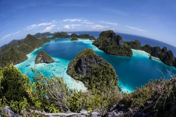 Tempat Wisata Menawan Papua Barat Eloratour Taman Alam Gunung Meja