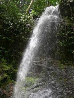 Wisata Papuaq Twa Gunung Meja Ayamfos Kota Manokwari Kawasan Memiliki