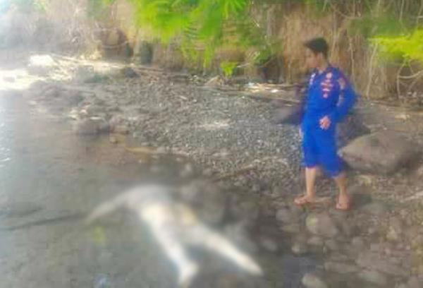 Tribrata Mayat Pria Identitas Ditemukan Pantai Ratatotok Tkp Kab Minahasa