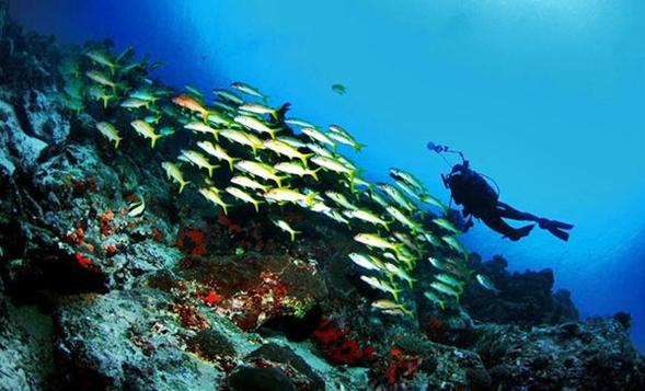 Daftar Tempat Wisata Menawan Kabupaten Minahasa Tenggara Eloratour Sulawesi Utara