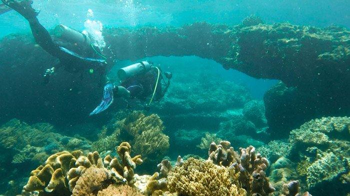 Mitra Kabupaten Minahasa Tenggara Sulawesi Utara Page 2 Potensi Laut