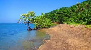 Pesona Wisata Tumbak Minahasa Tenggara Penjualweb Taman Laut Tambak Terletak
