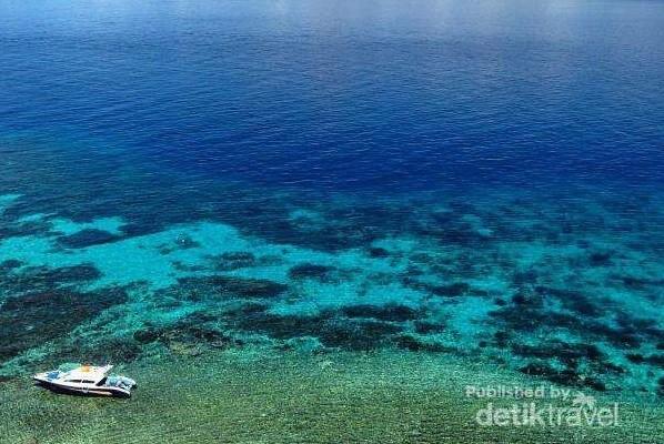 Tumbak Saingannya Bunaken Sulawesi Utara Keindahan Laut Sekitar Desa Clementine