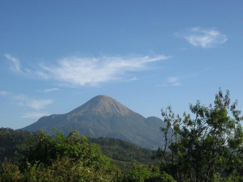 24 Tempat Wisata Terbaik Mojokerto Jawa Timur Portal Warta Gunung