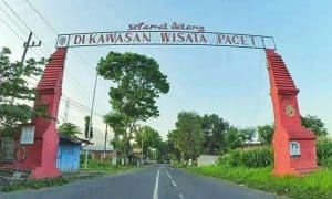Wisata Pacet Archives Outbound Enter Provider 0822 1321 7720 Pemkab