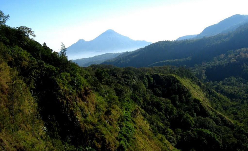 Wisata Pacet Kecamatan Menjadi Tempat Taman Mini Kab Mojokerto