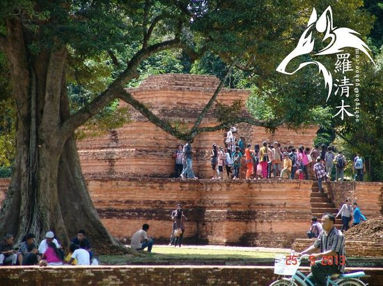 Candi Muaro Jambi Temple Picture Complex Kab