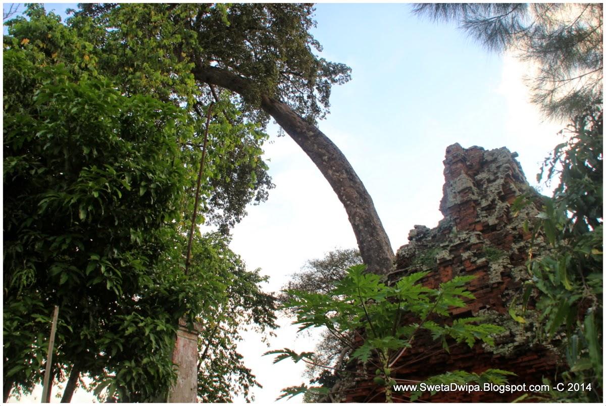 Sekar Rinonce Candi Lor Situs Sejarah Penting Cikal Bakal Sebatang