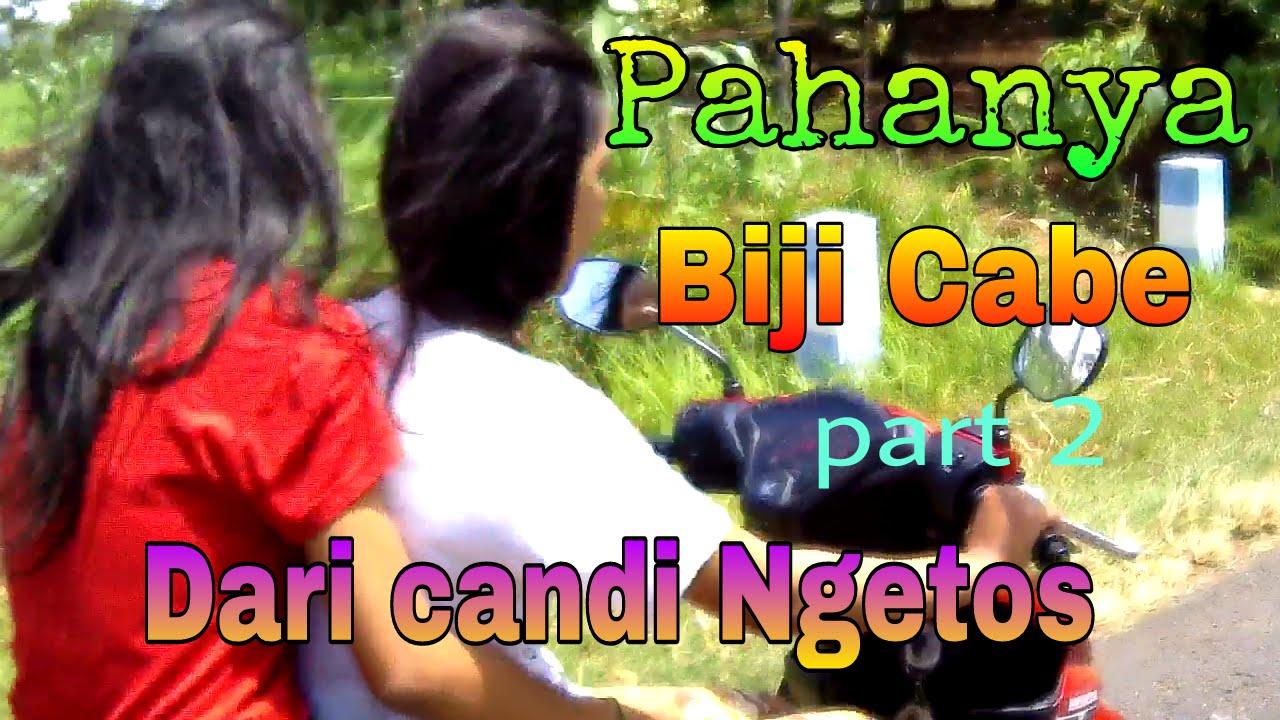 Biji Cabe Candi Ngetos Part 2 Nganjuk Youtube Kab