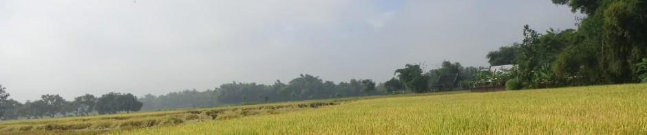 Goa Margo Trisno Kabupaten Nganjuk Wisata Jawatimuran Skip Content Kebun