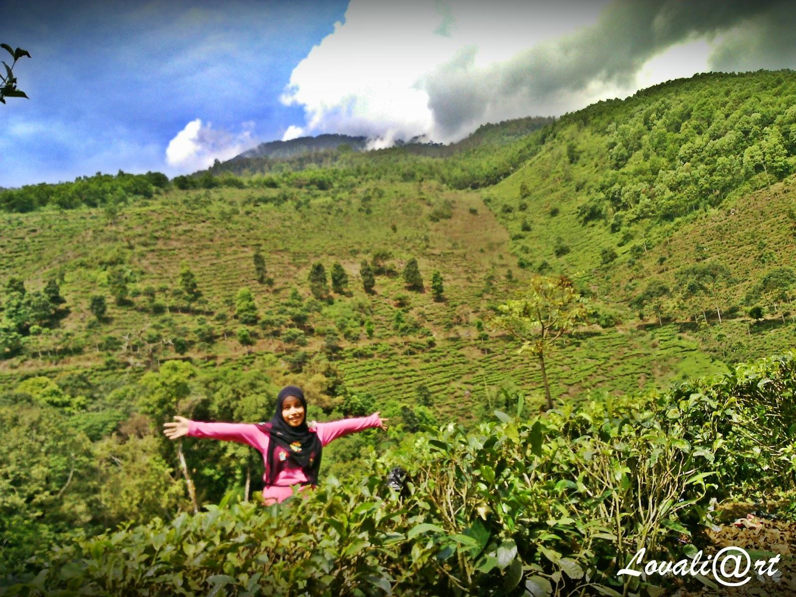 Mei 2014 Cakra Baymax Tourism Wisata Jawa Timur Borobudur Kebun