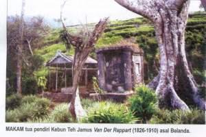 Wisata Kebun Teh Jamus Kabupaten Ngawi Jawatimuran Pusaka Kab Nganjuk