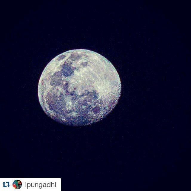 Discover Nganjuk Discovernganjuk Instagram Photos Videos Repost Ipungadhi Yo Iki
