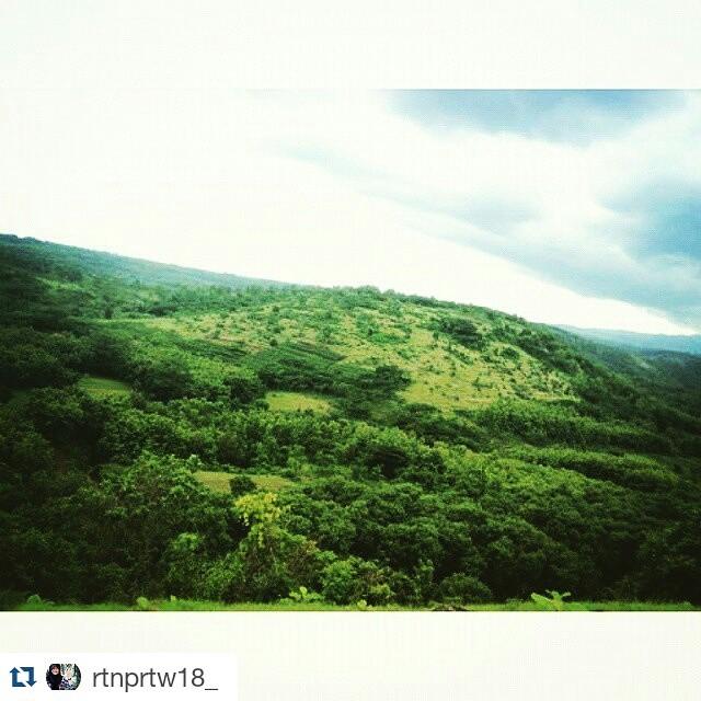 Discover Nganjuk Discovernganjuk Instagram Photos Videos Repost Rtnprtw18 Yo Iki