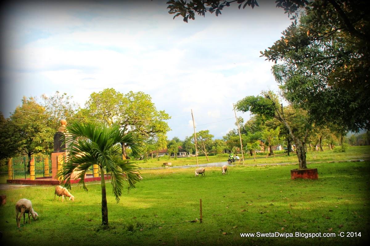 Sekar Rinonce Monumen Dr Soetomo Jejak Pahlawan Nasional Hamparan Rumput