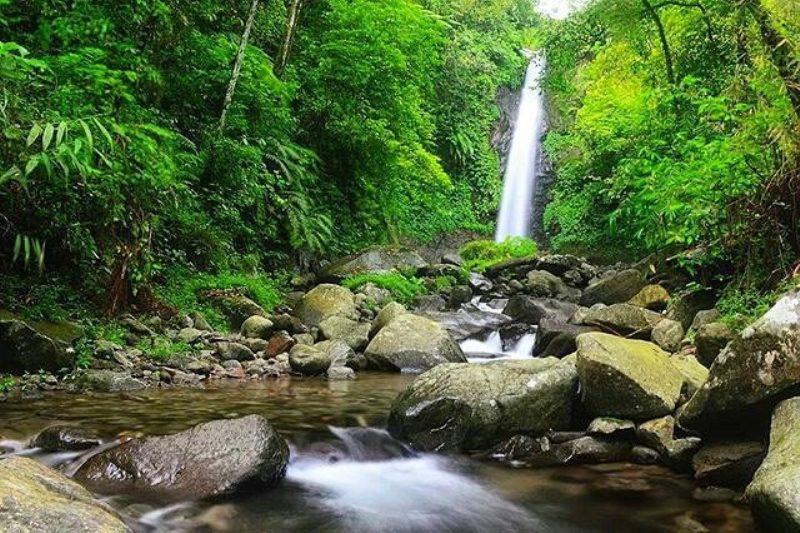 7 Tempat Wisata Hits Nganjuk Taman Kota Pandan Wilis Kab