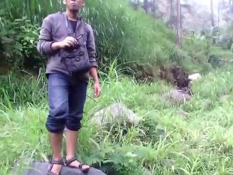 Petualanganku Gunung Ngawi Air Terjun Teleng Part 2 Youtube Kab