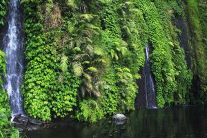 Terjun Teleng Air Kab Ngawi