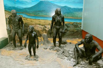Catatan Kurnia Triyuli Manusia Purba Trinil Ngawi Museum Ratusan Musium
