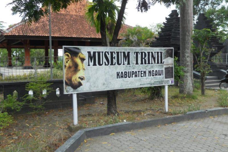 Empat Aktivitas Seru Berwisata Ngawi Mahligai Indonesia Musium Trinil Kab