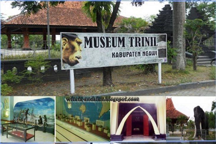 Mempelajari Kehidupan Manusia Purba Museum Trinil Antara News Musium Kab
