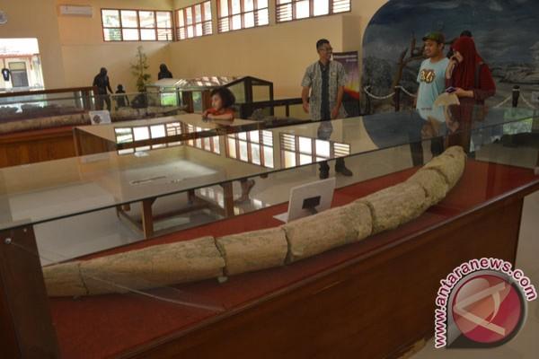 Museum Trinil Antara News Jawa Timur Musium Kab Ngawi