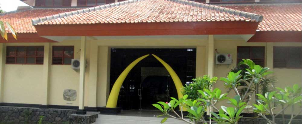 Museum Trinil Investigasi Madiun Kota Ngawi Arah Solo Kawasan Lembah