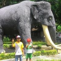 Museum Trinil Manusia Purba Kabupaten Ngawi Java Oriental Photo Prise