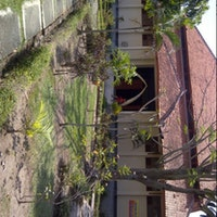 Museum Trinil Manusia Purba Kabupaten Ngawi Jawa Timur Das Foto