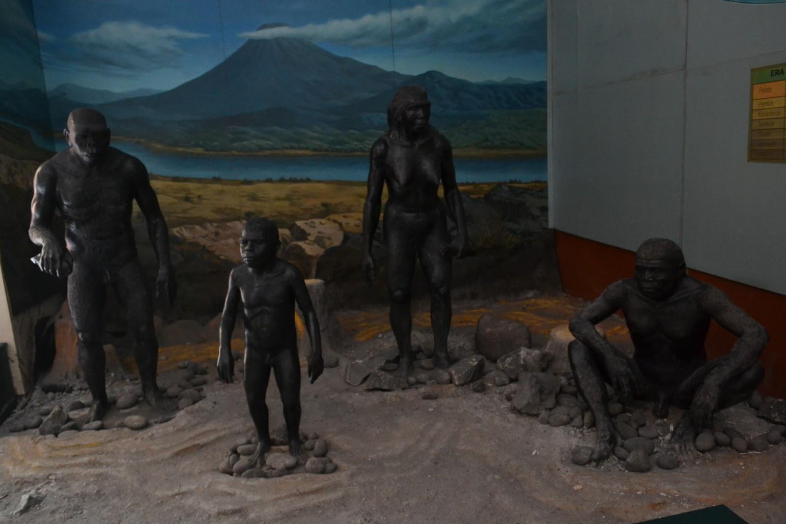 Museum Trinil Musium Kab Ngawi