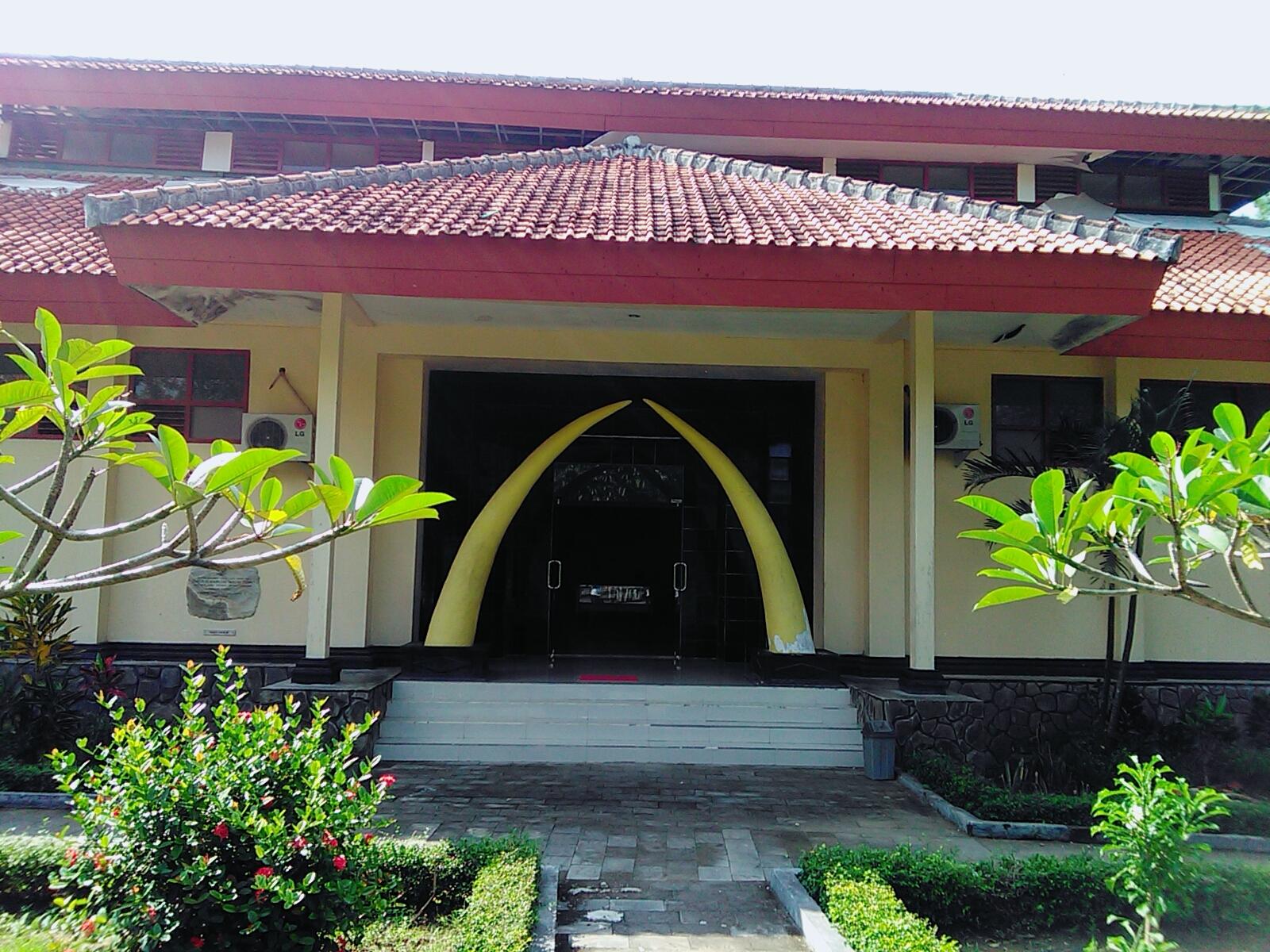 Museum Trinil Ngawi Accounting Education Musium Kab